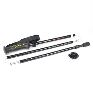 ThermoWade Wading Staff