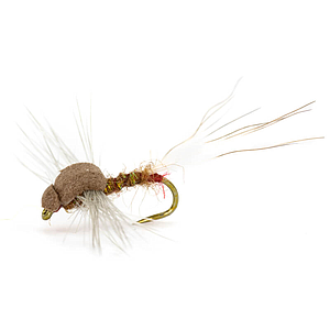 INS Dry Fly Sherry Spent