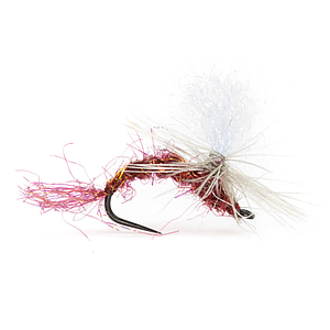 INS Dry Fly Parachute Claret